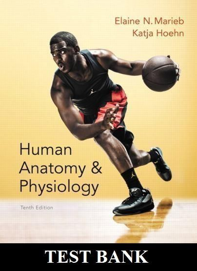 Human anatomy and physiology 10th edition marieb test bank fandeluxe Images
