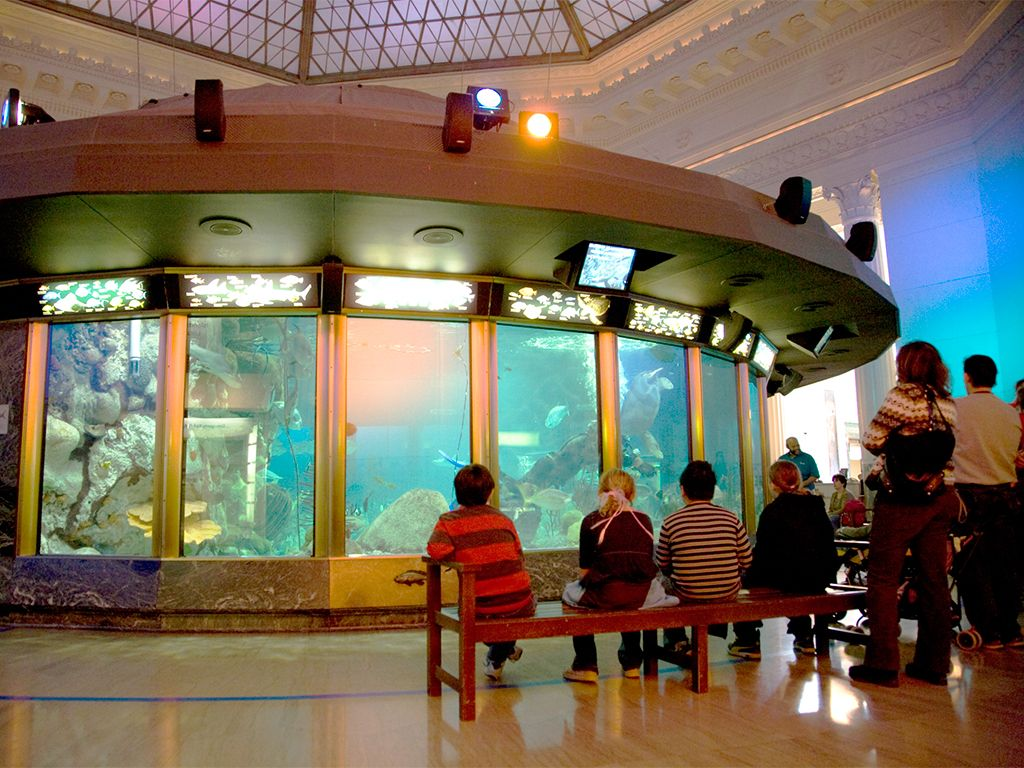 You're looking at one of the largest indoor aquariums in ...