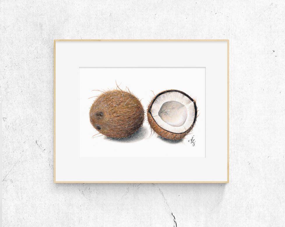Coconut Art Print Coconut Realistic Art Wall Decor Kitchen Art