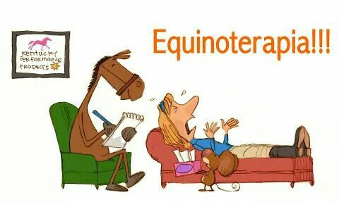 Equinoterapia Caballos Psicologia Y Chistes