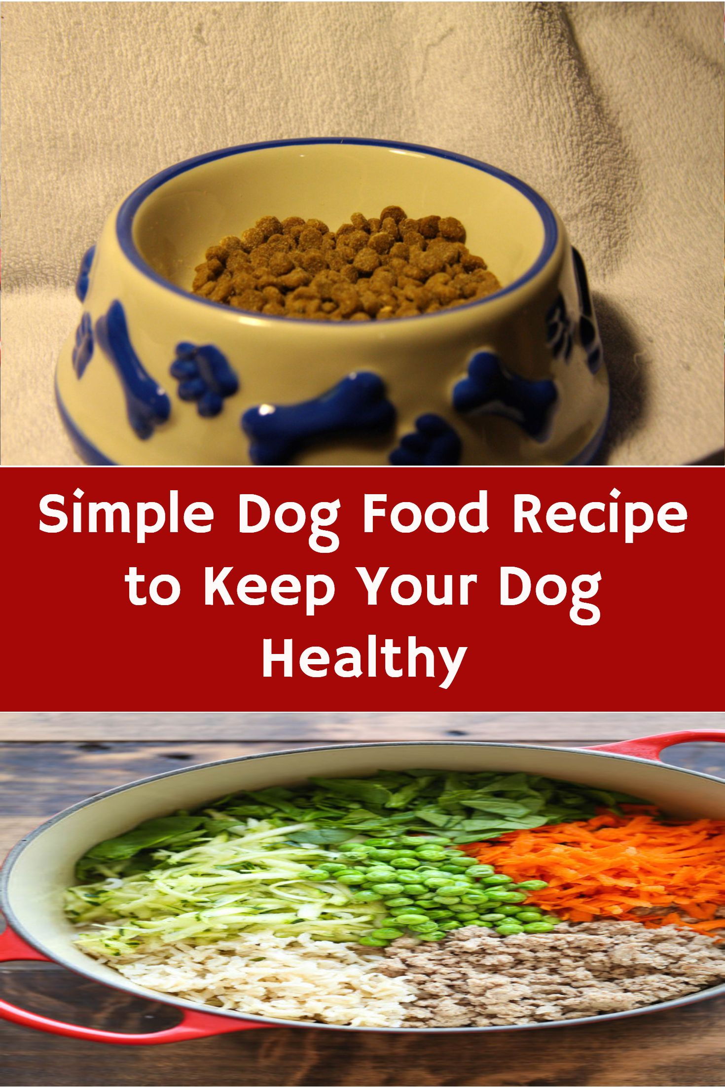 Simple Dog Food Recipe To Keep Your Dog Healthy Dog Food Recipes