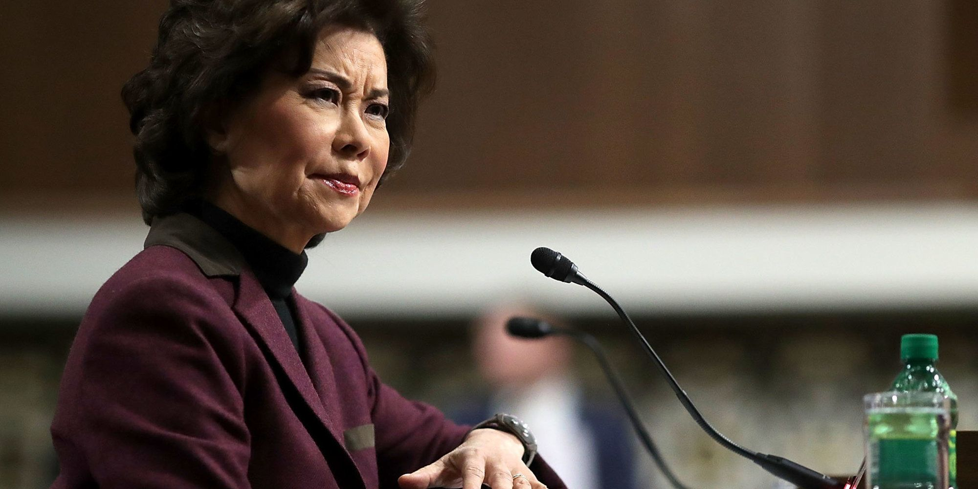 Trump's Transportation Secretary Swears She Doesn't Want To 'Sue His Very Soul'