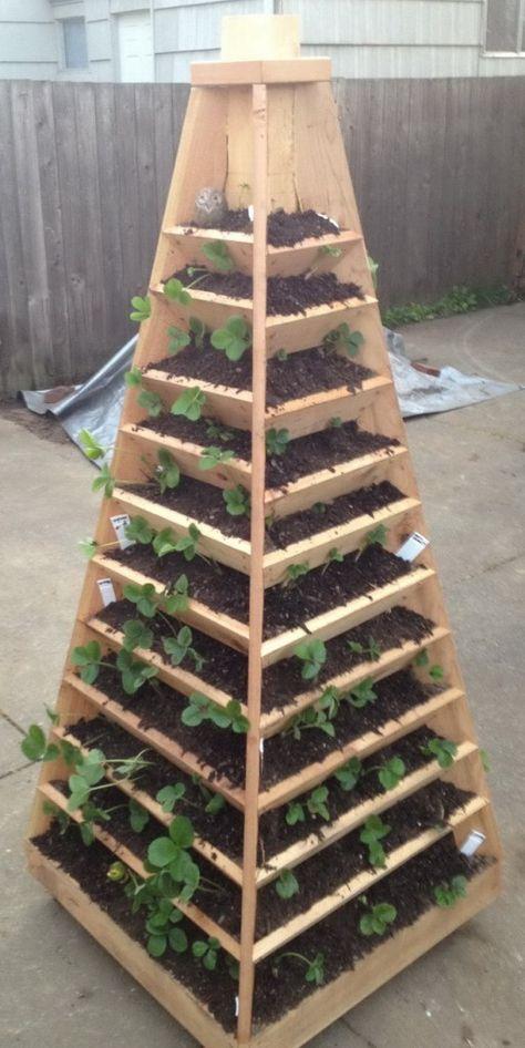 Cómo construir un jardín piramidal | Pinterest | Jardín, Carpintería ...