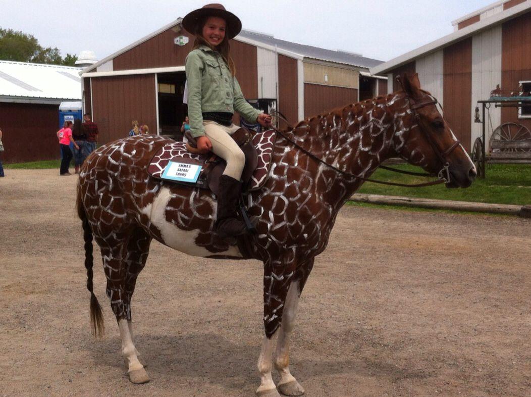 Pony Costume Ideas 120 Best Horse Costumes Images On Pinterest Horses Costume