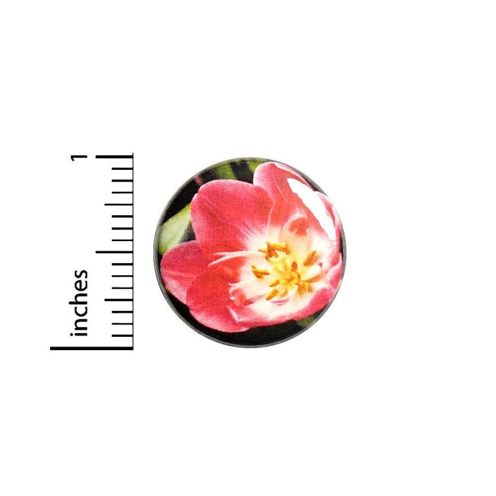 Gardening Tulipa Gesneriana Tulips Flowers Latin Names Scientific Names Nfkn79 Low Jpg 400 436 Plant Jokes Gardening Jokes Gardening Humor