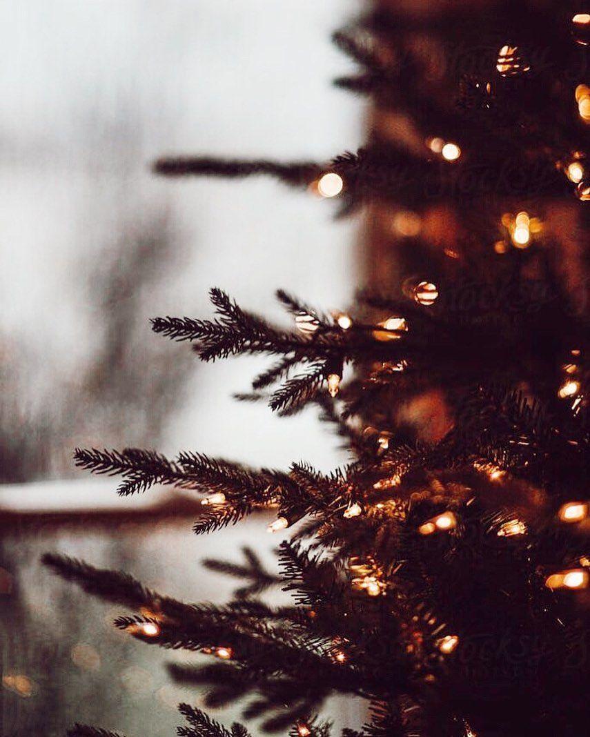 211 Christmas Help 2020 Born #christ #city #David #day #Lord #Luke #Mer