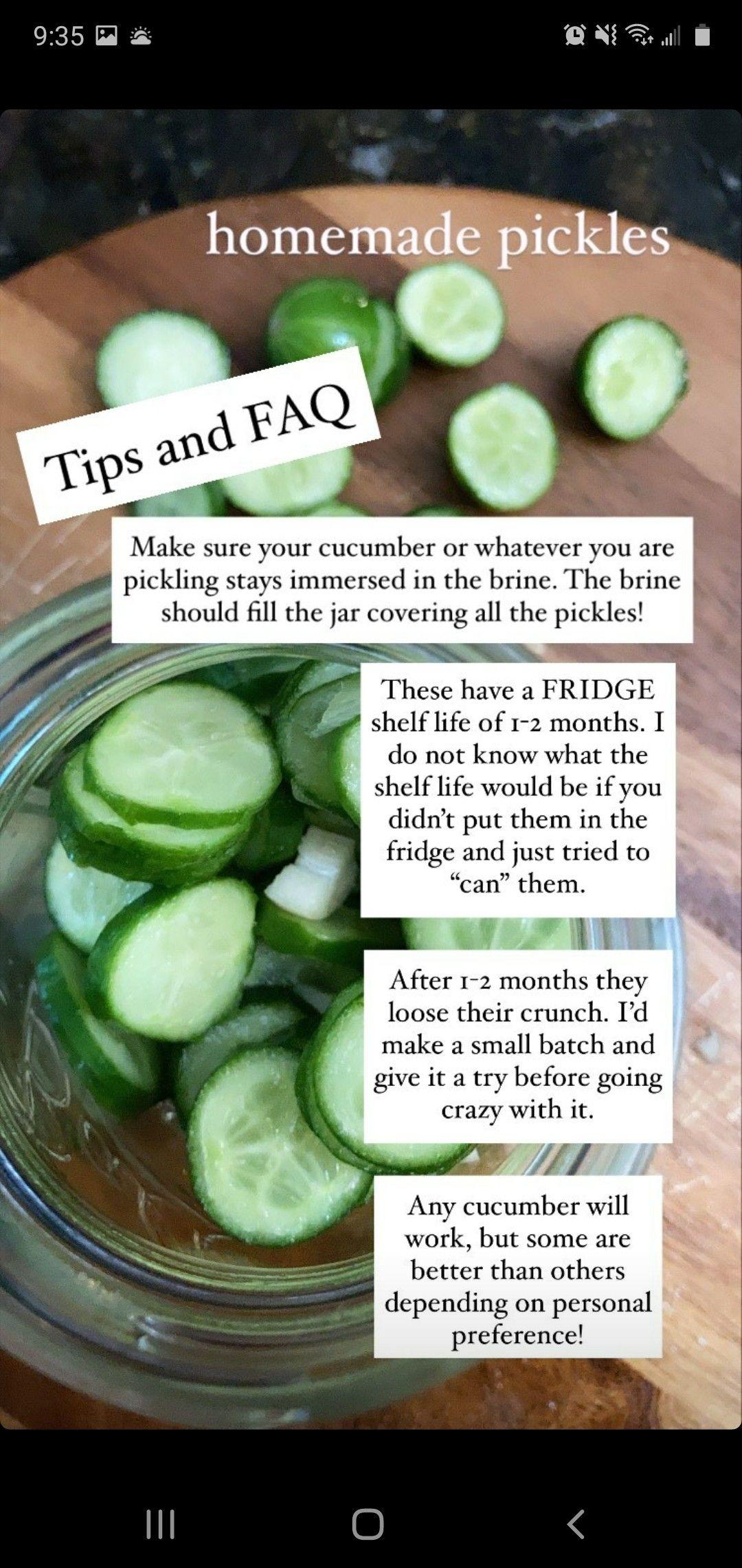 Pin By Tyara Walker On Ketogenic Diet Homemade Pickles Pickles Cucumber