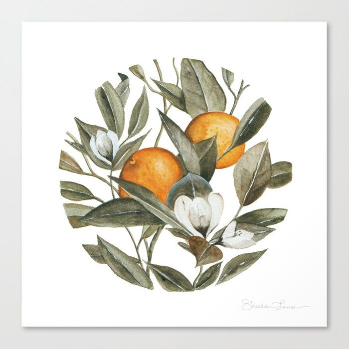 Blooming Citrus Watercolor Canvas Print by Shealee