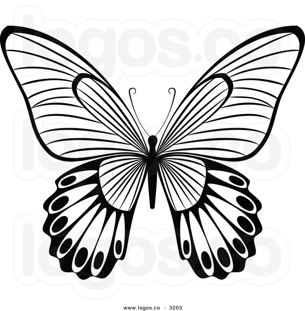Pin By Fosterginger On Coloring Book Butterfly