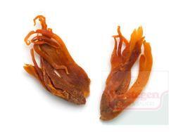 Foelie - Foelie is het omhulsel (zogenoemde zaadrok) van de nootmuskaat. Het heeft een warm, aromatisch, fijne en subtiele smaak met een citroenachtige zoetheid en een zeer krachtige bitterheid. #verstegen #krachtig #smaakvol