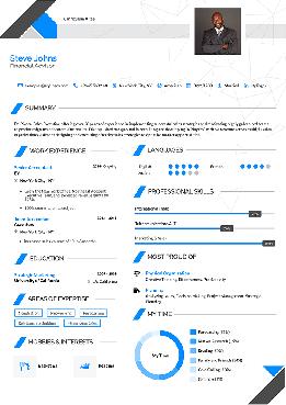 Professional Resume Builder Stylingcv 2020 Professional Resume Clean Resume Template Online Resume Builder