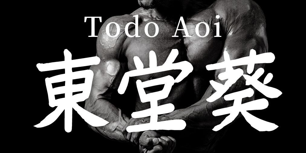 Todo Aoi Name In Japanese Kanji And Meaning Jujutsu Kaisen In 2021 Japanese Kanji Japanese Names Jujutsu