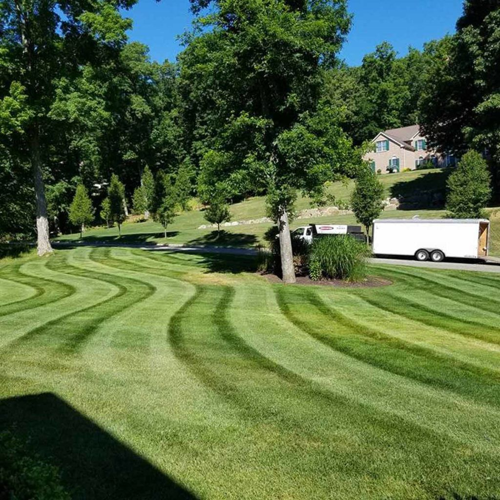 8 Awesome Lawn Mowing Designs You Should Try Lawn Design Lawn Lawn Mower