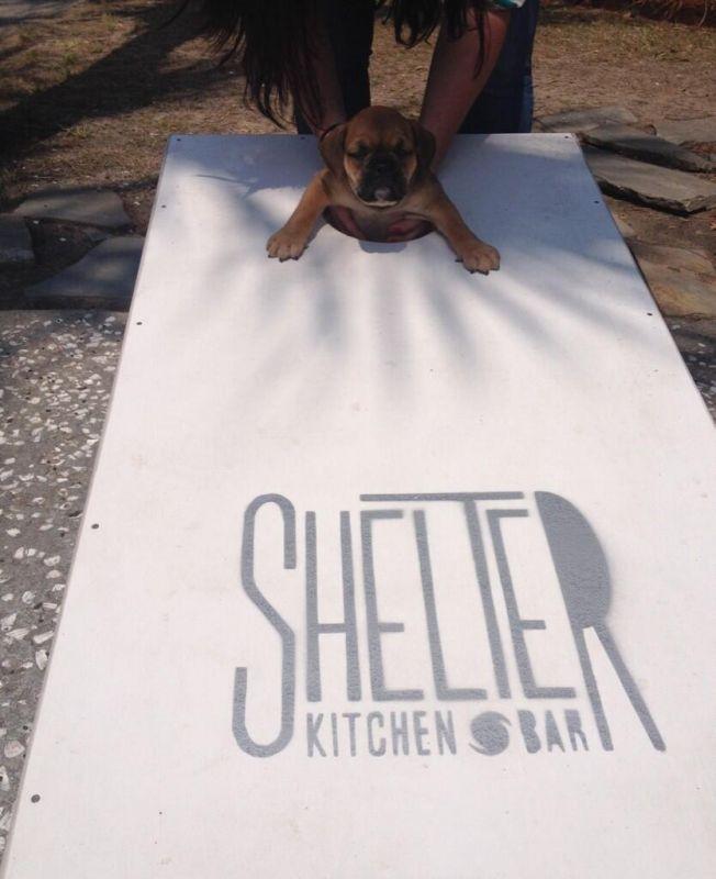Shelter Kitchen And Bar Charleston South Carolina Pleasant Shelter