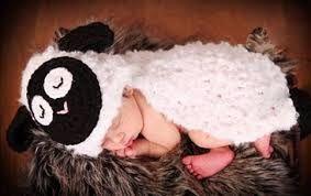 kết quả hình ảnh cho funny sheep 9gag sheep pinterest baby