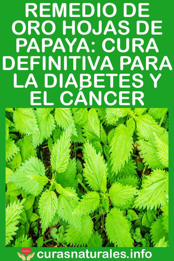 beneficios para la salud del té de hoja de papaya y la diabetes