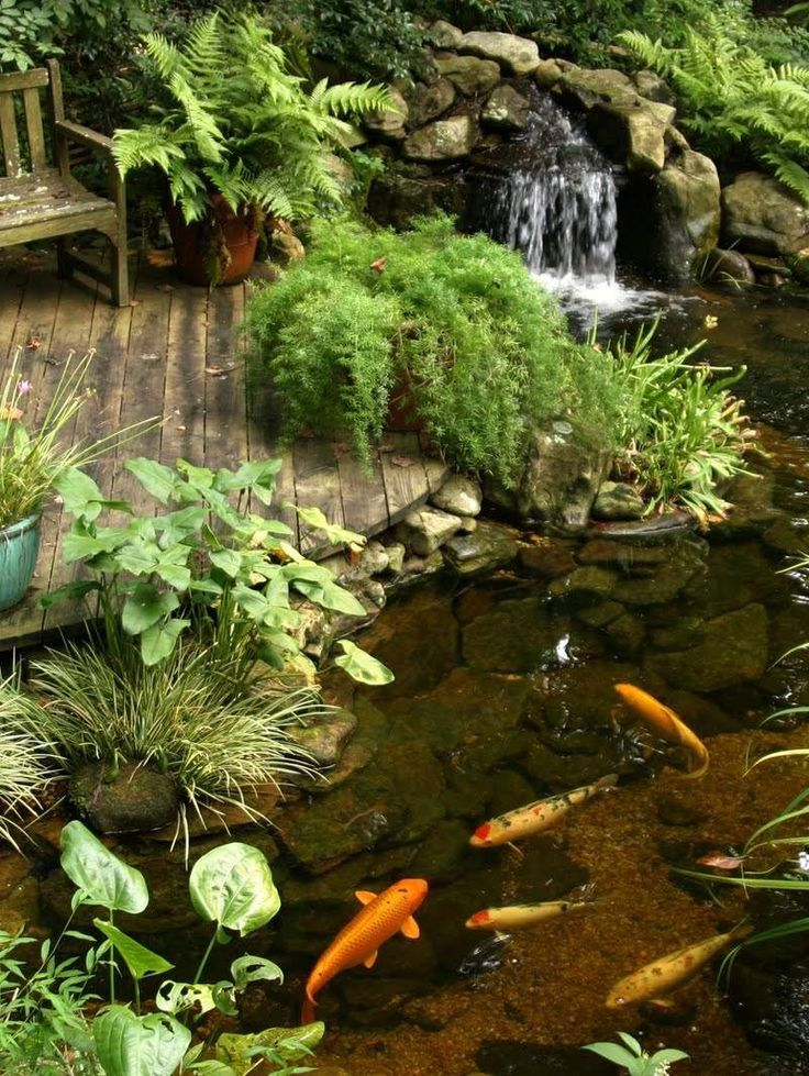 Garden Ponds With Waterfalls Small
