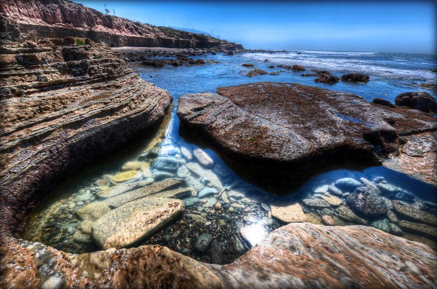 Tide Pools At Point Loma Ca Point Loma Ca In 2018 Pinterest