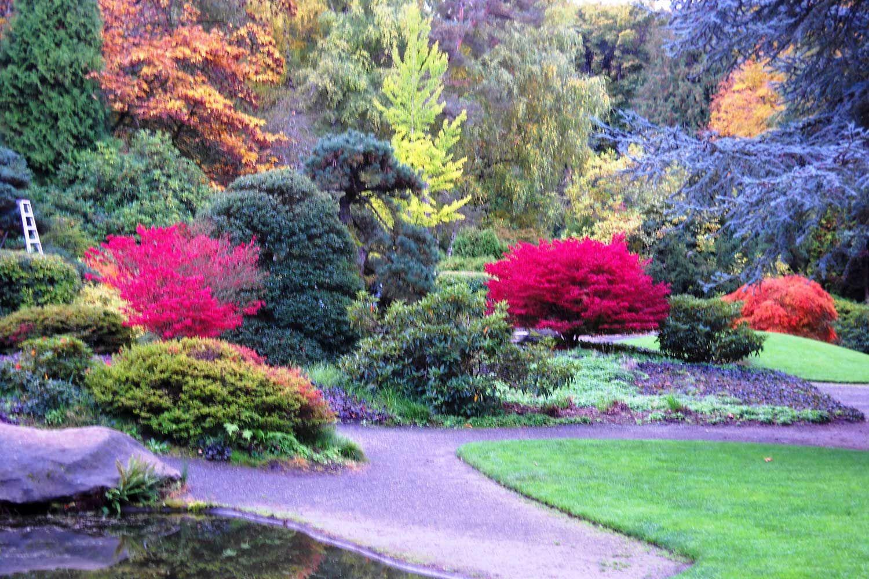 Kubota Japanese Gardens.Kubota Garden is my other favorite