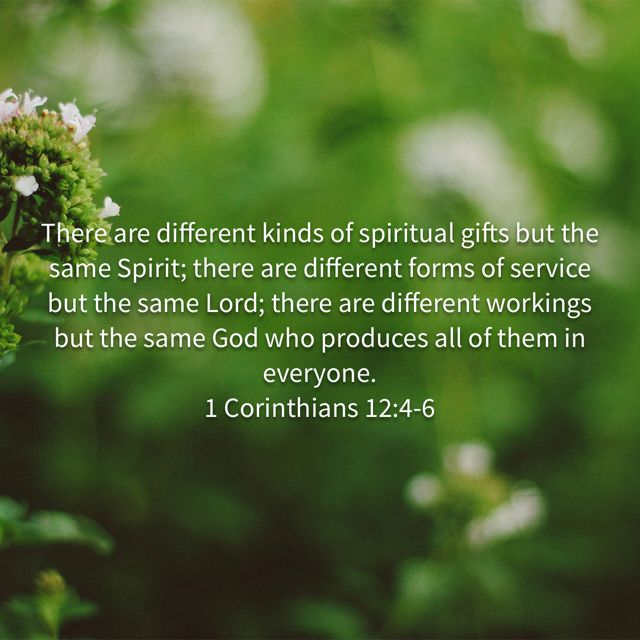 Pin by gretchen schott on scripture pinterest corinthians 12 1 corinthians are some features common to all charisms despite their diversity all are gifts charismata grace from outside ourselves all are forms of negle Images