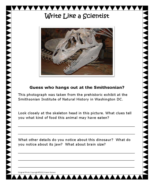 Pin By Heather Buchanan Hadorn On Homeschool Writing Classes Procedural Writing Picture Prompts Dinosaur writing activities kindergarten