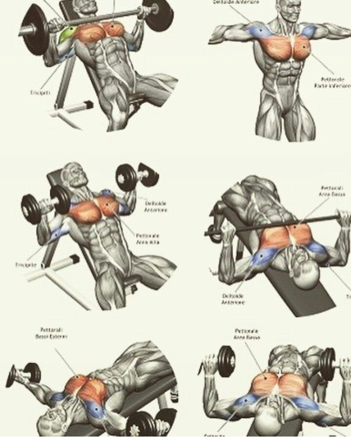Pin de troy harris en fitness chest pinterest for Ejercicios gym