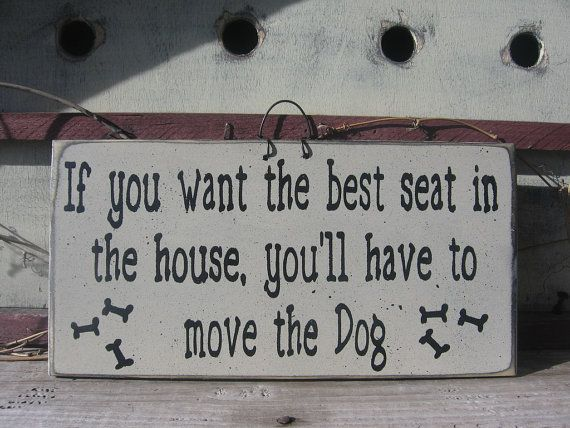 Yep, I think this sums it up - If you want the best seat in the house, you'll have to move the dog.