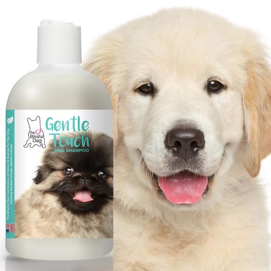 Gentle Touch Dog Shampoo For Puppies Seniors And Any Dog Who