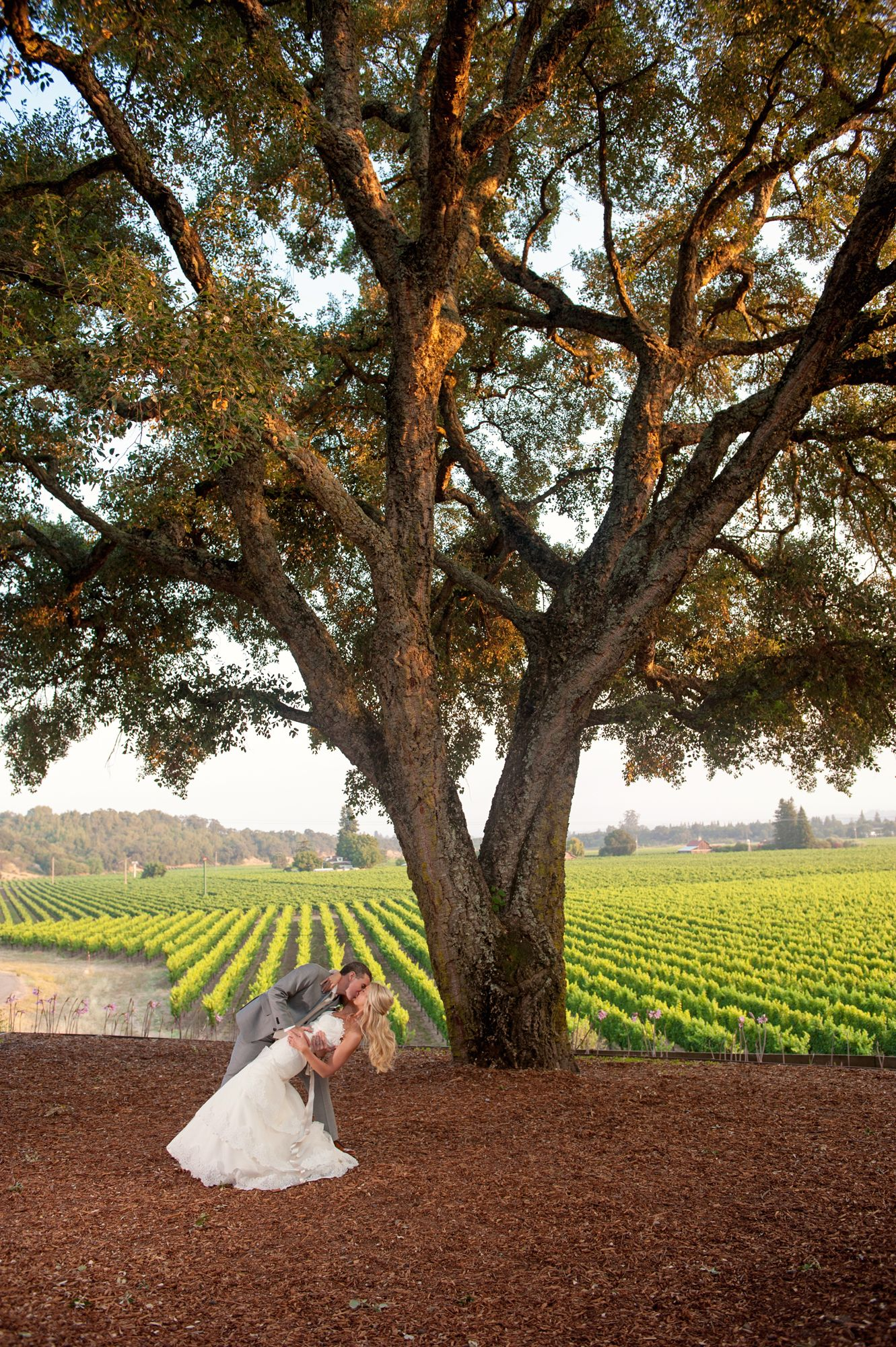 A Barn Wedding at Healdsburg Country Gardens in Healdsburg ...