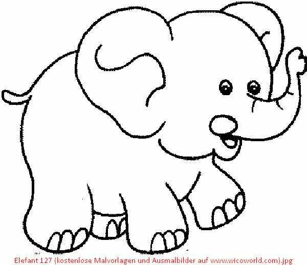 Pin by Mhi Smit on Skilpad | Pinterest | Coloring pages, Color and