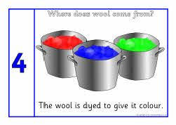 Where does wool come from (sequencing posters website also has black and white outline images)