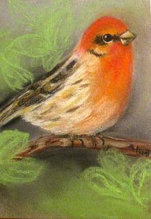Soft Pastel Drawing - Bird