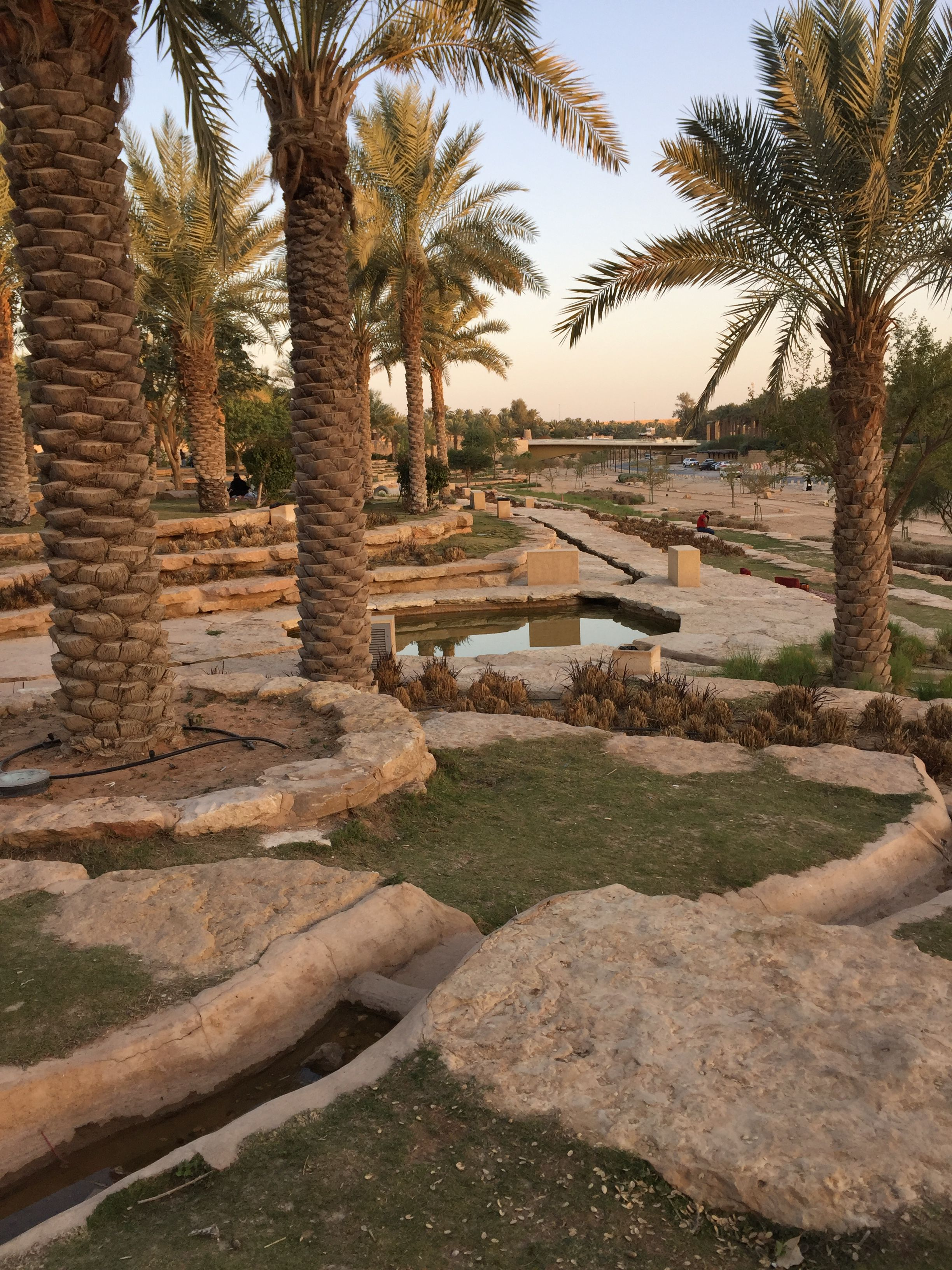 Wadi Hanifah Park Excellent Place To Spend Picnic Landscaping Images Landscape Desert Landscaping