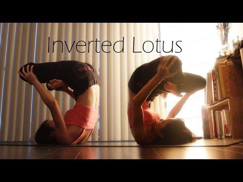 plough/plow shoulder stand inverted lotus  yoga journey