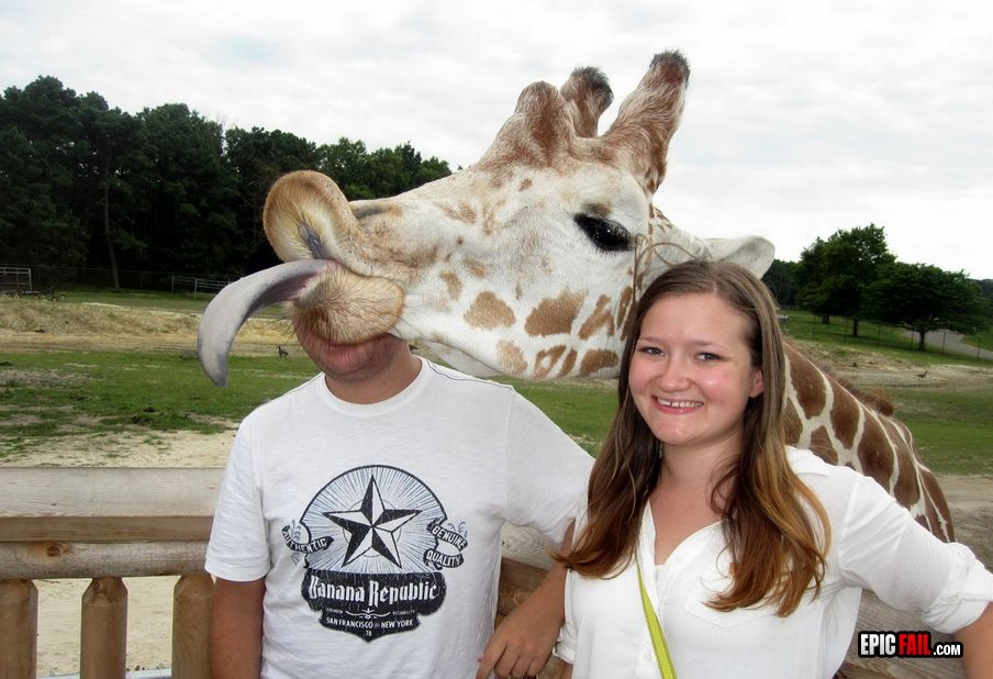 The Top  Photobombs Ever - Tackk