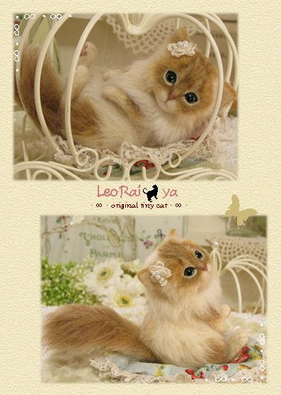 Needle felted cat by LeoRai * ya from Japan.  Her work is beautiful.