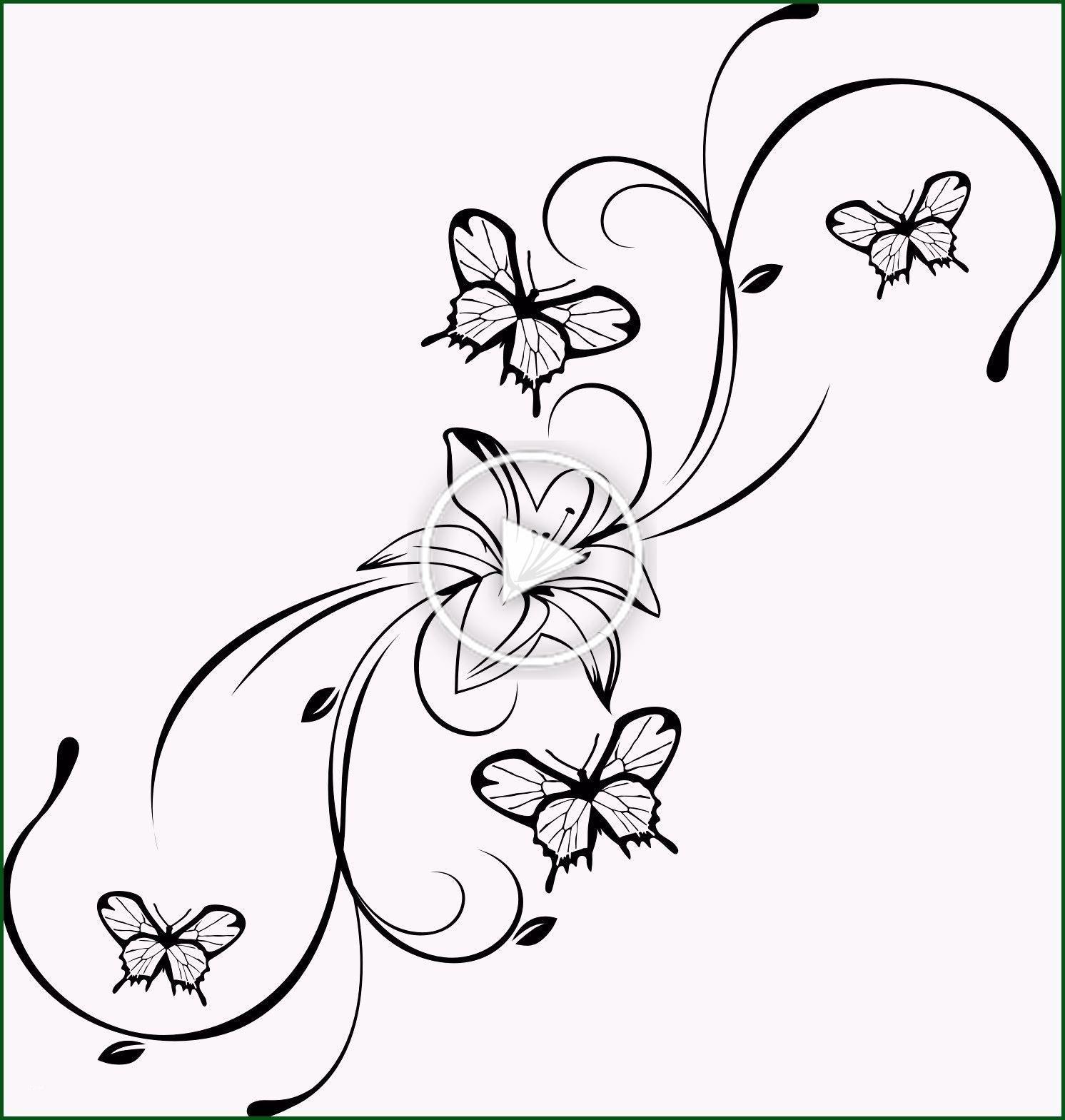 De Nouveaux Modeles De Papillon Malvorlagen Malvorlagenfurkinder Malvorlagenfurerwachsene Schmetterling Vorlage Malvorlagen Blumen Malvorlagen