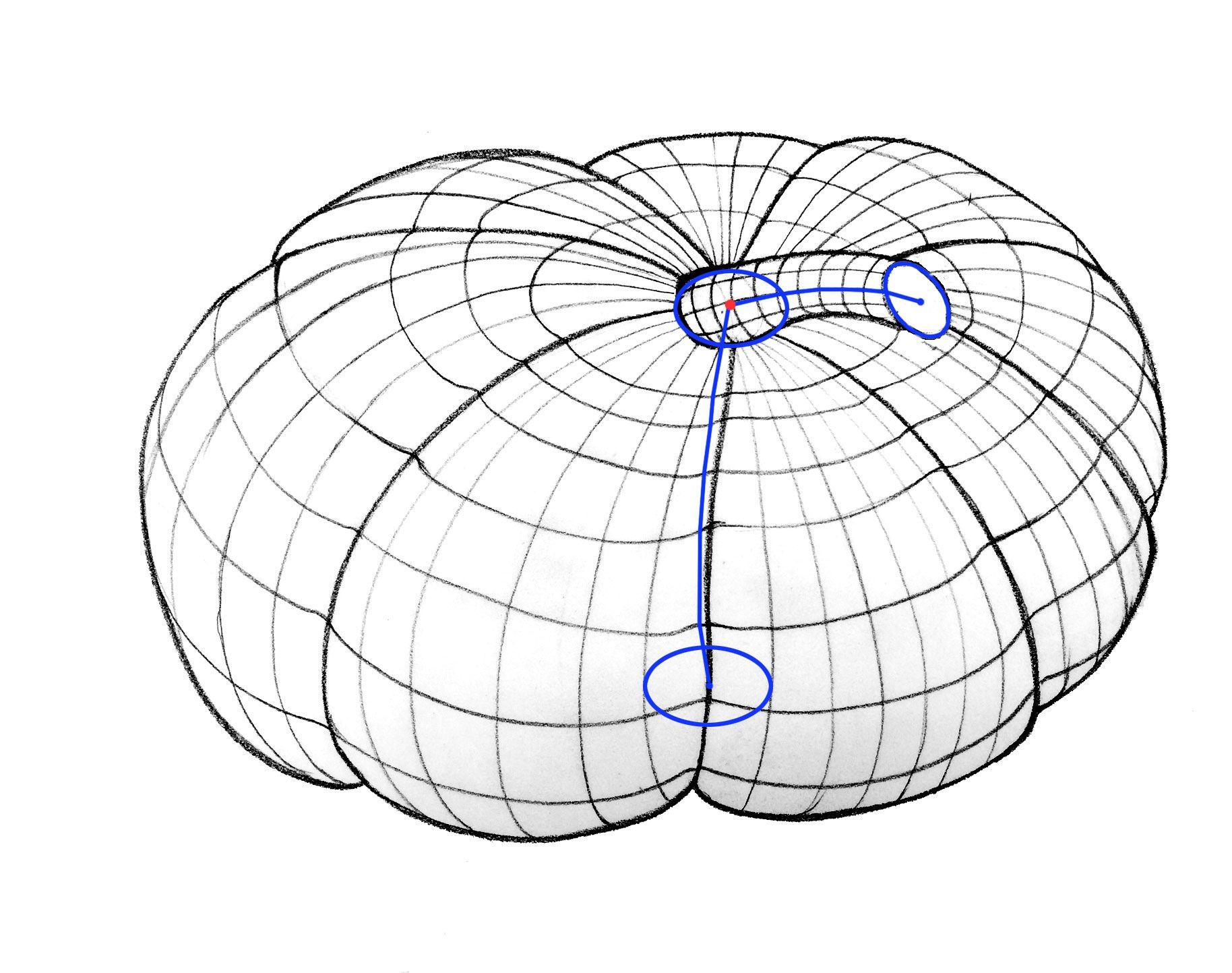 Form Volume Cross Contour Line