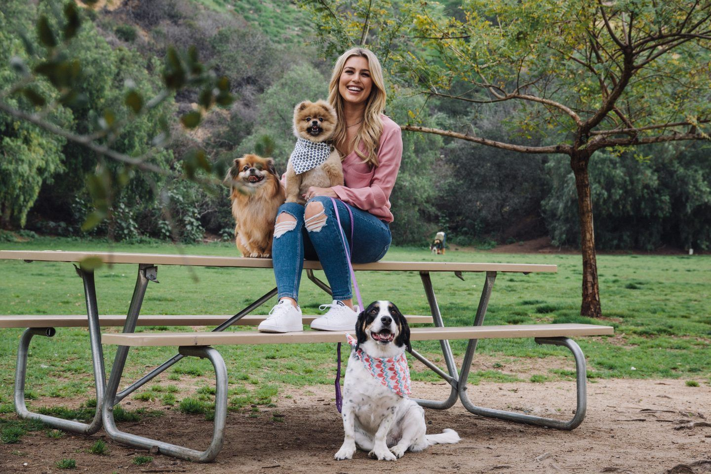 Carissa Culiner Cool pets, Pet owners, Doggy