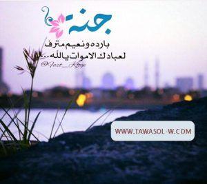 كلام عن الميت قصير 2017 كلام قصيرعن الميت