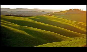 Per il suo futuro l'Italia guarda all'agricoltura. L'agricoltura attrae sempre più imprenditori, anche tra i più giovani