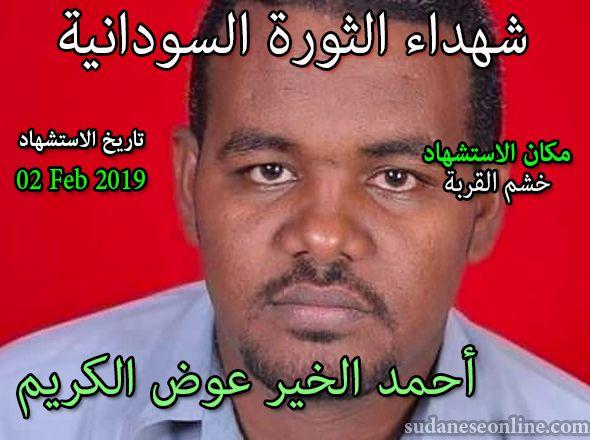 أحمد الخير عوض الكريم