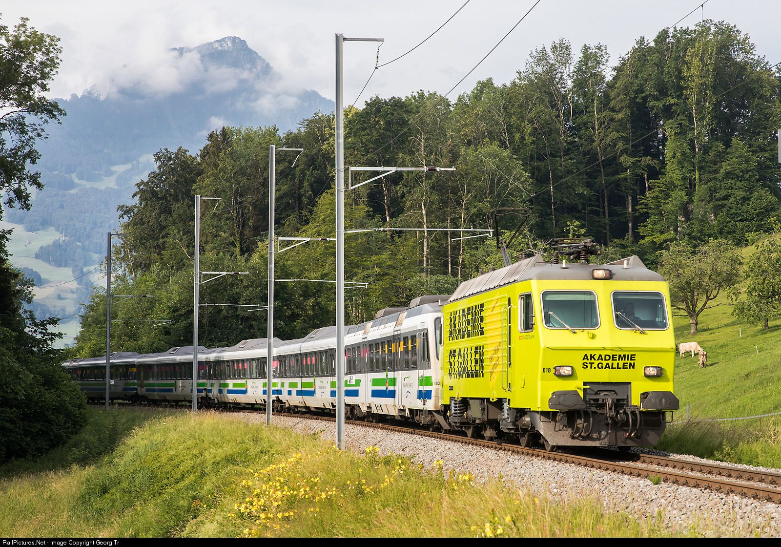 446 018 Sudostbahn Sob Switzerland Re 446 At Arth Goldau Switzerland By Georg Trub Scenic Train Rides Train Rides Train