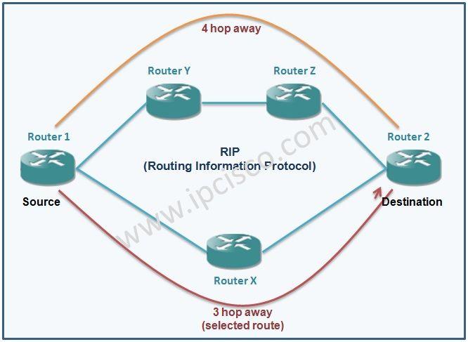 Rip Routing Information Protocol Rip Ccna Tech Pinterest