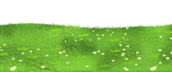 grass ground with daisies png clipart | gardenscrapy | pinterest