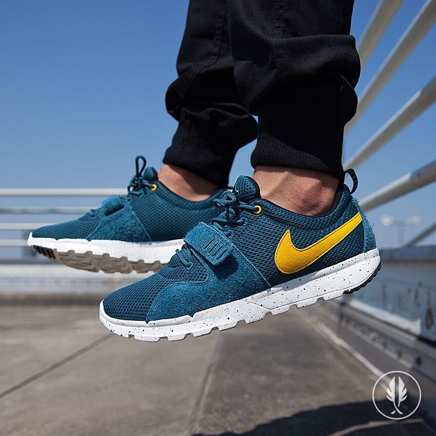 48d6d0d56008 Nike SB Trainerendor  Night Factor