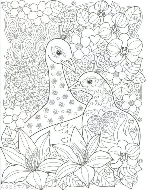 Vögel. Entspannen Färbung | Colouring Pages | Pinterest | Adult ...