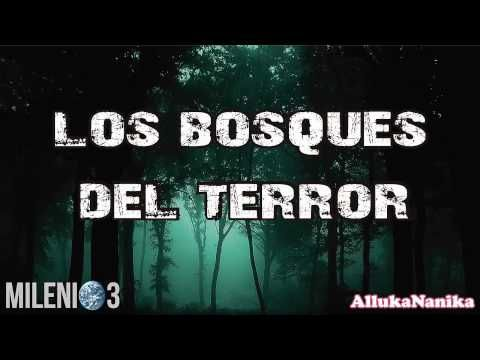 Milenio 3 - Nos miran - YouTube | Cuarto milenio | Pinterest | Youtube