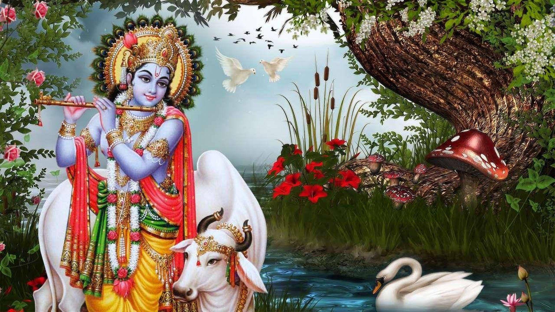 Wonderful Wallpaper Lord Radha Krishna - 2851c46c5705dc7208626a8e071d567a  Gallery_239642.jpg