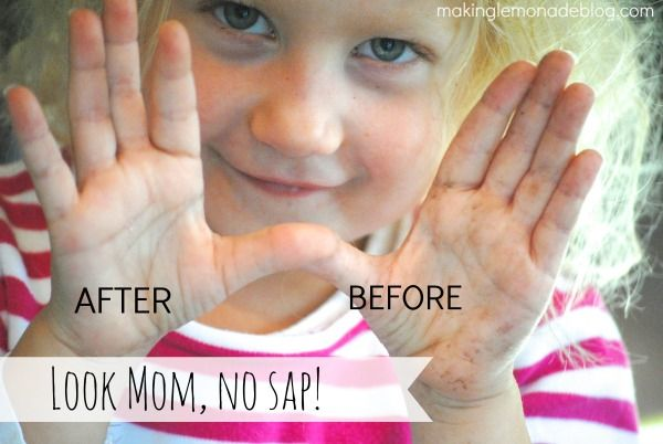 Secret Trick For Removing Sap From Hands In Seconds Remove Tree Sap Tree Sap Sap